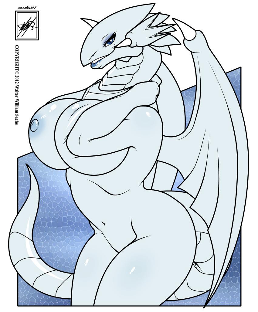 blue cartoon white dragon eyes Fire emblem awakening robin and chrom