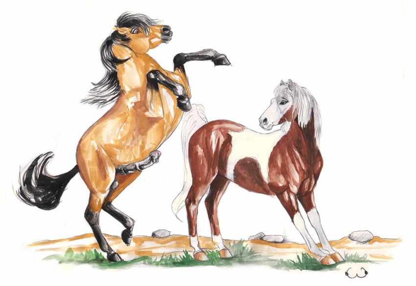 the cimarron stallion of rain spirit One punch man dark shine