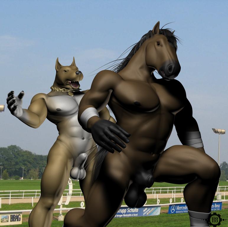 with gif mating horse human Back at the barnyard chicken